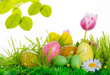 Cestino per le uova di Pasqua